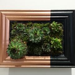 Giardino verticale - Black and copper
