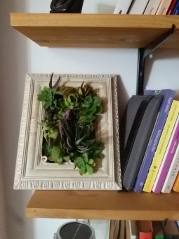 Giardino verticale - sablè